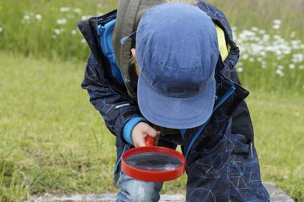 visit plockton nts spring surprises magnifying glass children
